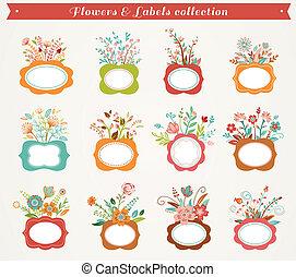 -, collezione, cornici, vettore, illustrazioni, fiori