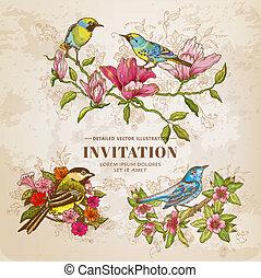 -, vettore, set, hand-drawn, fiori, uccelli, illustrazione, vendemmia