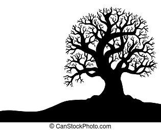 1, albero, senza, silhouette, foglia