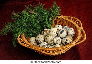 1, quaglia, uova