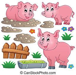1, tema, collezione, maiale