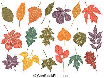 19, autunno, ector, set, illustrazione