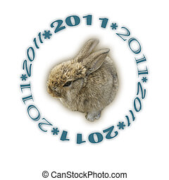 2011, coniglio