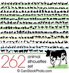 262, silhouette, set, animale