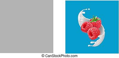 3d, illustrazione, realistico, vettore, splash., frutte, lampone, latte, icona