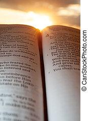 4:2., fondo, santo, malachi, verticale, bibbia, aperto, colpo, sole, clouds., tramonto, evidenziato