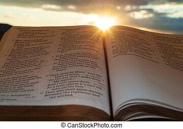 4:2., tramonto, colpo, sole, malachi, clouds., aperto, evidenziato, santo, orizzontale, bibbia, fondo