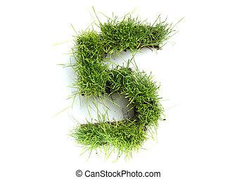 5, fatto, -, numeri, erba