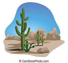 abbandoni cactus
