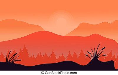 abete rosso, montagna, silhouette, foresta, fondo