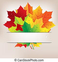 acqua, foglie, gocce, autunno, composizione