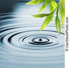 acqua, fresco, bambù, sopra, foglie