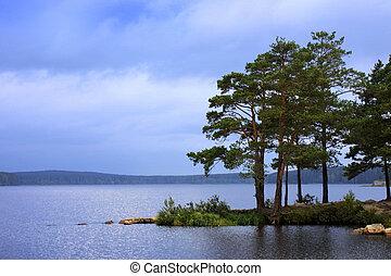 acqua, sopra, paesaggio, alberi pino