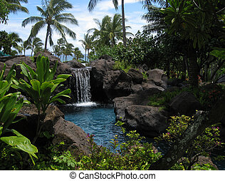 acqua tropicale, laguna
