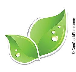 acqua, verde, vettore, foglia, droplets.