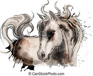 acquarello, carino, poco, pittura, cavallo
