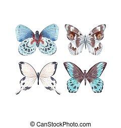 acquarello, farfalle, vettore, set