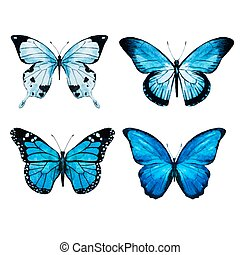 acquarello, farfalle, vettore