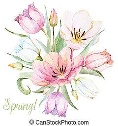 acquarello, fiori primaverili, vettore