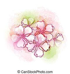 acquarello, flowers., vettore, illustra