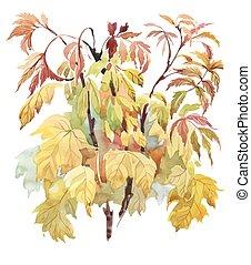acquarello, leaves., fondo