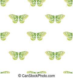 acquarello, modello, farfalle