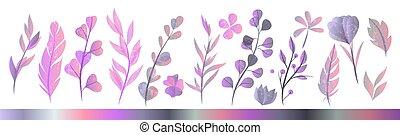 acquarello, set, mano, autunno, erbe, disegnato