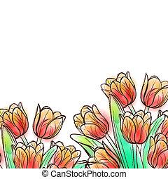 acquarello, tulips