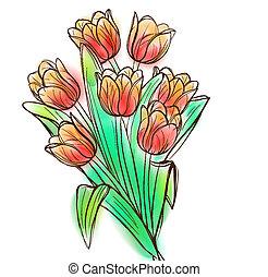 acquarello, tulips, mazzolino