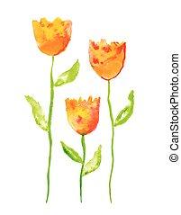 acquarello, vettore, tulips, illustrazione