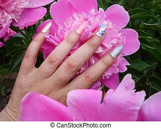 affascinante, chiodo, donne, arte, manicure, peonies., disegno, mani, multicolor