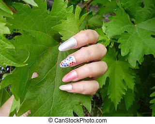 affascinante, chiodo, uva, donne, arte, leaves., manicure, disegno, mani, multicolor