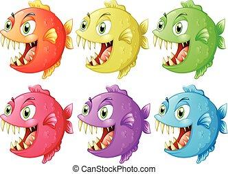 affilato, fish, sei, denti