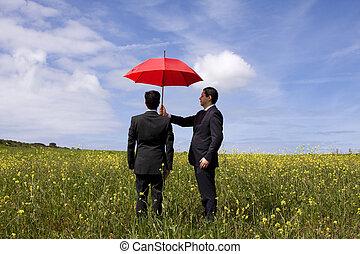 agente assicurazione, protezione