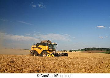 agricoltura, -, combinare