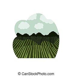agricoltura, disegno, paesaggio