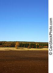 agricoltura, finlandese