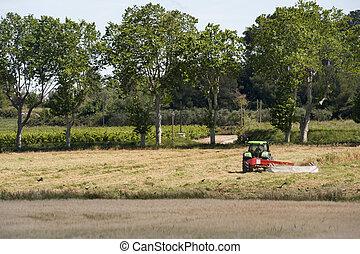 agricoltura, francese, paesaggio