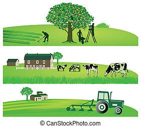 agricoltura, giardino