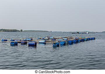 agricoltura, montenegro, aquaculture, tailandia, asia