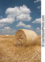 agricoltura, mucchio fieno, -