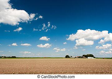 agricoltura, paesaggio