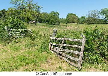 agricoltura, paesaggio, recinto