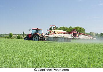agricoltura, pianta, protezione, -