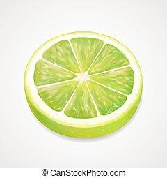 agrume, illustrazione, realistico, vettore, slice., 3d, calce