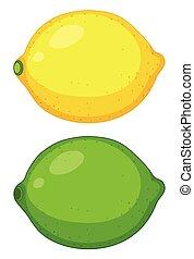 agrume, set, frutta