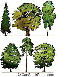 alberi.