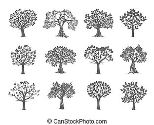 alberi., vettore, illustration., collezione