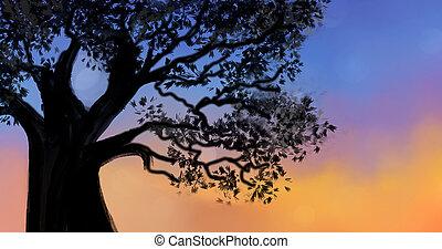 albero, blu, cielo tramonto