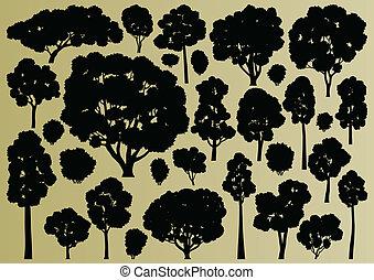 albero, collezione, silhouette, illustrazione, fondo, foresta